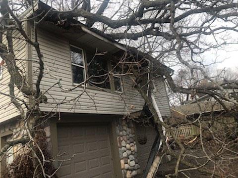 Storm damage tree on roof